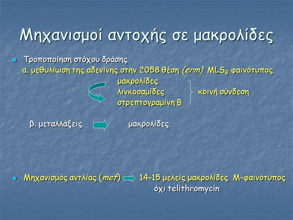 Μηχανισμοί αντοχής σε μακρολίδες  Τροποποίηση στόχου δράσης α. μεθυλίωση της αδενίνης στην 2058 θέση (erm) MLS B φαινότυπος α. μεθυλίωση της αδενίνης