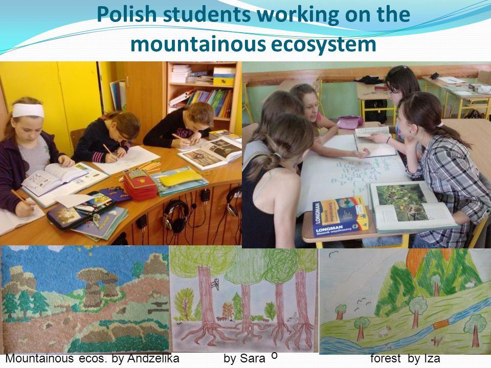 Polish students working on the mountainous ecosystem Mountainous ecos. by Andzelikaby Sara forest by Iza o