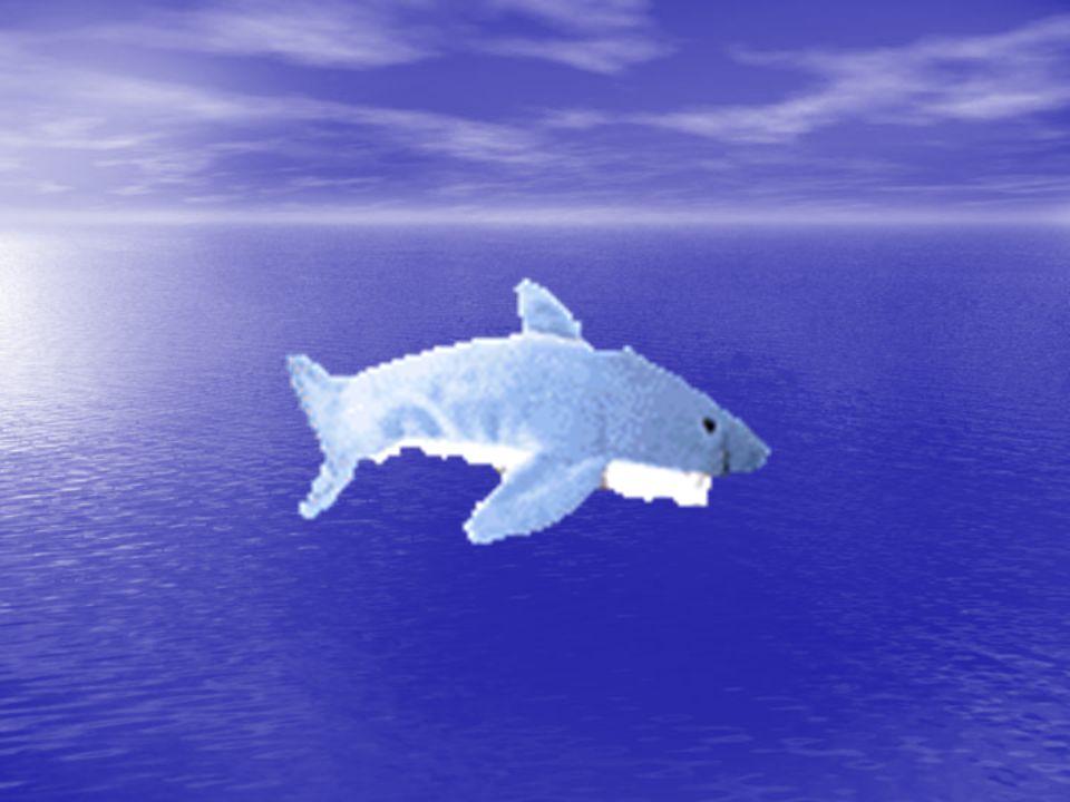 1.ΤΟ ΠΑΡΑΚΤΙΟ ΟΙΚΟΣΥΣΤΗΜΑ Δομή: Δομή: ΑΒΙΟΤΙΚΑ ΣΤΟΙΧΕΙΑ (άμμος, πέτρες, βότσαλα, βυθός, νερό, αέρας, φως, κλίμα) ΒΙΟΤΙΚΑ ΣΤΟΙΧΕΙΑ (μικροοργανισμοί, πλαγκτόν, ψάρια, μαλάκια, όστρακα, φύκια, θηλαστικά,έντομα, θαλασσοπούλια κ.λ.π.).