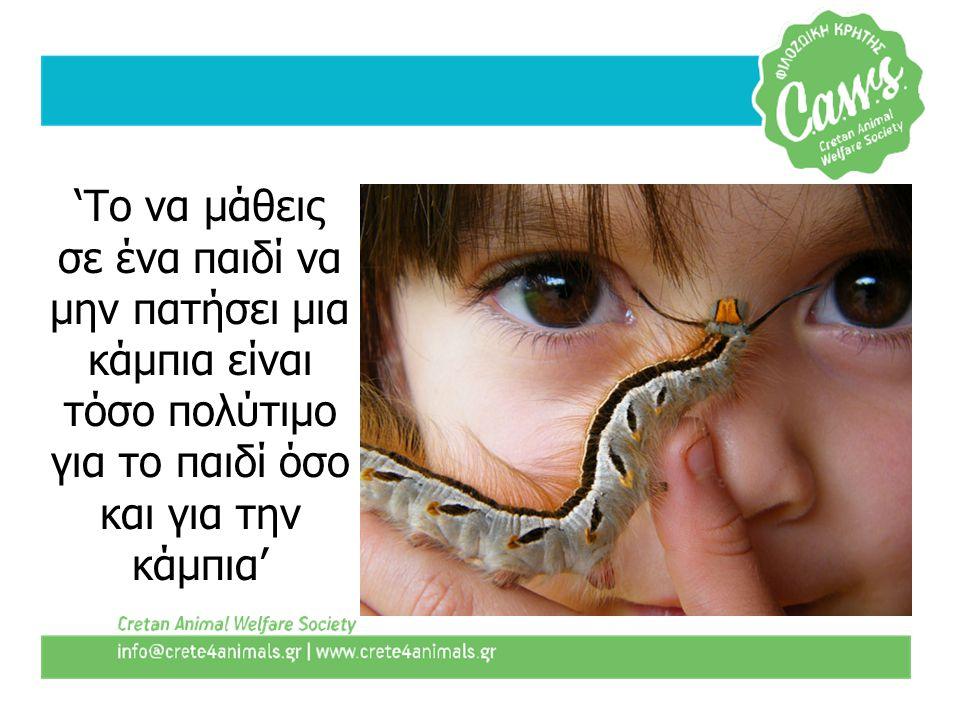 'Το να μάθεις σε ένα παιδί να μην πατήσει μια κάμπια είναι τόσο πολύτιμο για το παιδί όσο και για την κάμπια'