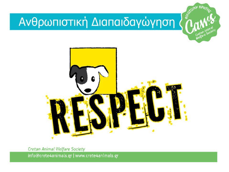 • Παρουσιάσεις σε σχολεία • Εκπαίδευση εθελοντών • Kindness Clubs • Νέα ιστοσελίδα με υλικό στα ελληνικά
