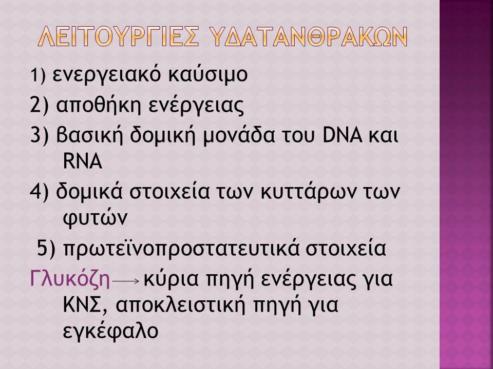1) ενεργειακό καύσιμο 2) αποθήκη ενέργειας 3) βασική δομική μονάδα του DNA και RNA 4) δομικά στοιχεία των κυττάρων των φυτών 5) πρωτεϊνοπροστατευτικά