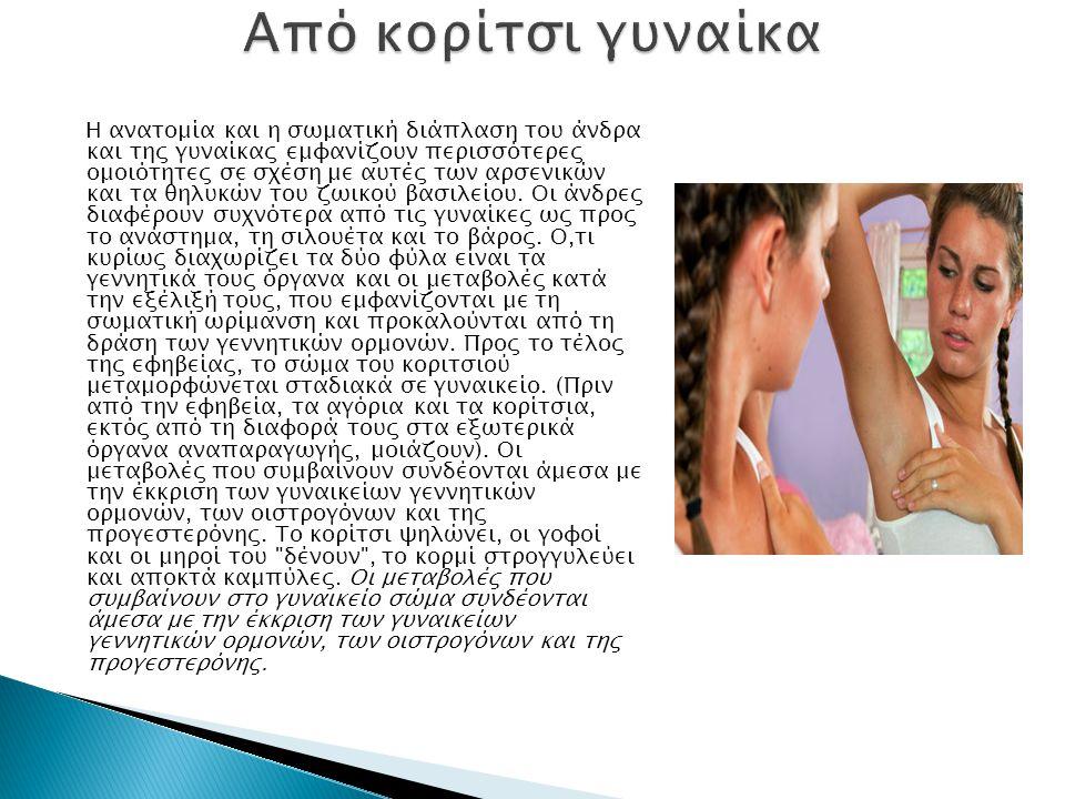 Η ανατομία και η σωματική διάπλαση του άνδρα και της γυναίκας εμφανίζουν περισσότερες ομοιότητες σε σχέση με αυτές των αρσενικών και τα θηλυκών του ζωικού βασιλείου.