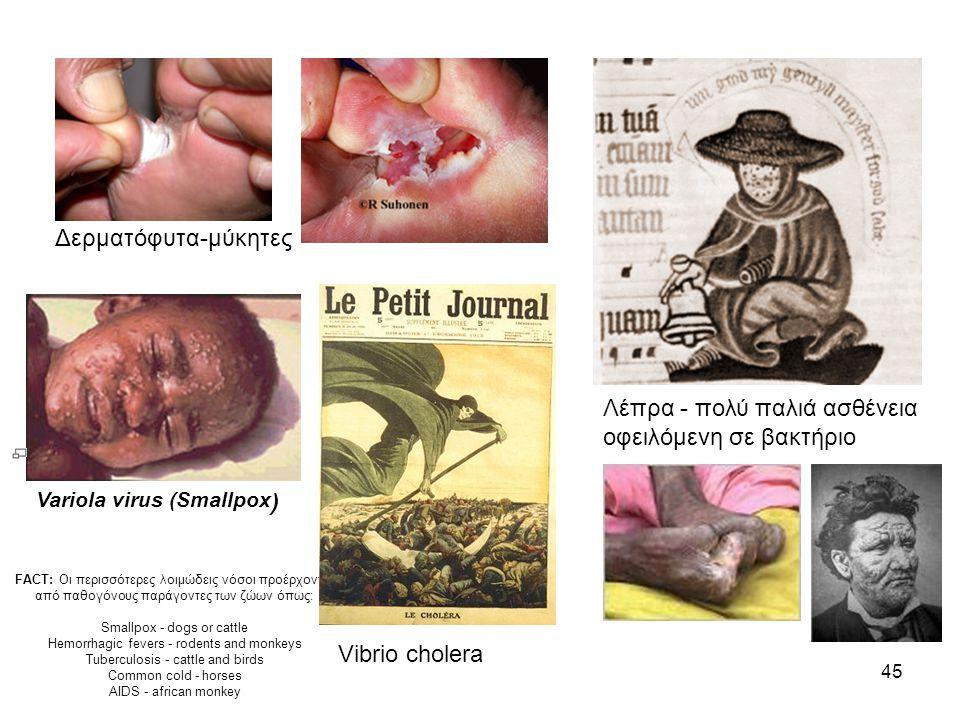 45 Variola virus (Smallpox ) Δερματόφυτα-μύκητες Λέπρα - πολύ παλιά ασθένεια οφειλόμενη σε βακτήριο FACT: Οι περισσότερες λοιμώδεις νόσοι προέρχονται από παθογόνους παράγοντες των ζώων όπως: Smallpox - dogs or cattle Hemorrhagic fevers - rodents and monkeys Tuberculosis - cattle and birds Common cold - horses AIDS - african monkey Vibrio cholera