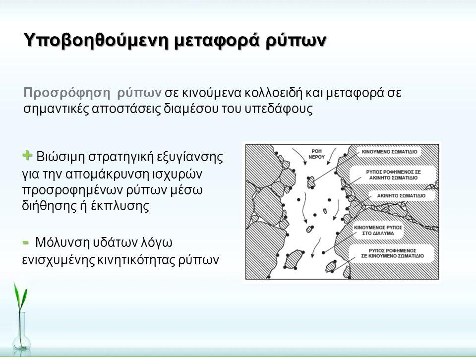 Υποβοηθούμενη μεταφορά ρύπων Προσρόφηση ρύπων σε κινούμενα κολλοειδή και μεταφορά σε σημαντικές αποστάσεις διαμέσου του υπεδάφους + + Βιώσιμη στρατηγι