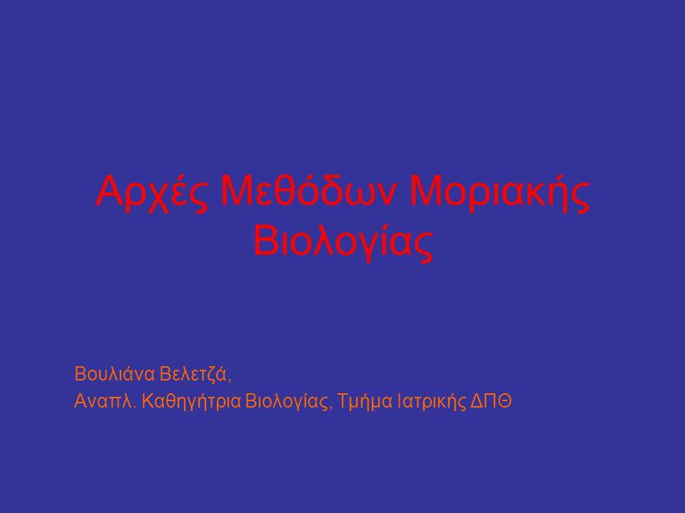 Αρχές Μεθόδων Μοριακής Βιολογίας Βουλιάνα Βελετζά, Αναπλ. Καθηγήτρια Βιολογίας, Τμήμα Ιατρικής ΔΠΘ