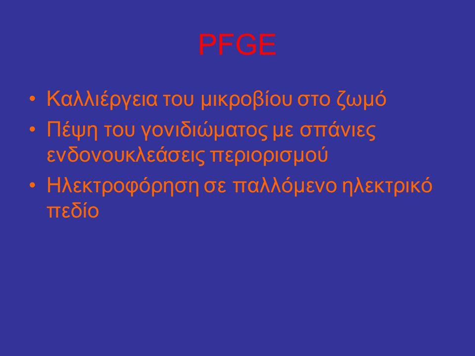PFGE •Καλλιέργεια του μικροβίου στο ζωμό •Πέψη του γονιδιώματος με σπάνιες ενδονουκλεάσεις περιορισμού •Ηλεκτροφόρηση σε παλλόμενο ηλεκτρικό πεδίο