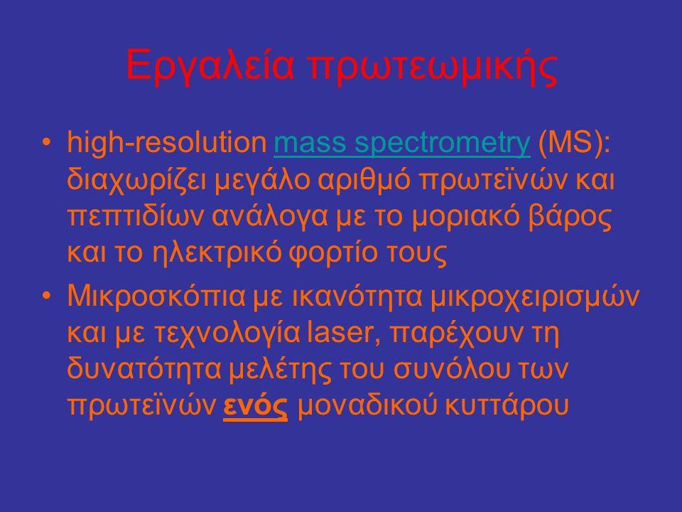 Εργαλεία πρωτεωμικής •high-resolution mass spectrometry (MS): διαχωρίζει μεγάλο αριθμό πρωτεϊνών και πεπτιδίων ανάλογα με το μοριακό βάρος και το ηλεκ