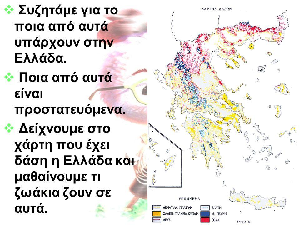  Συζητάμε για το ποια από αυτά υπάρχουν στην Ελλάδα.  Ποια από αυτά είναι προστατευόμενα.  Δείχνουμε στο χάρτη που έχει δάση η Ελλάδα και μαθαίνουμ