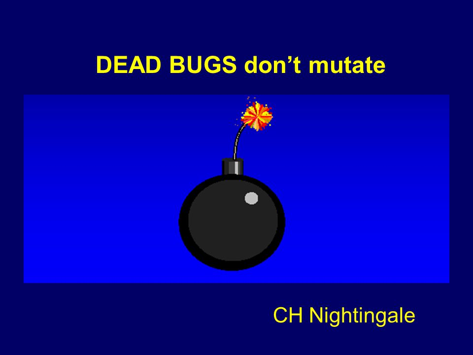 CH Nightingale DEAD BUGS don't mutate