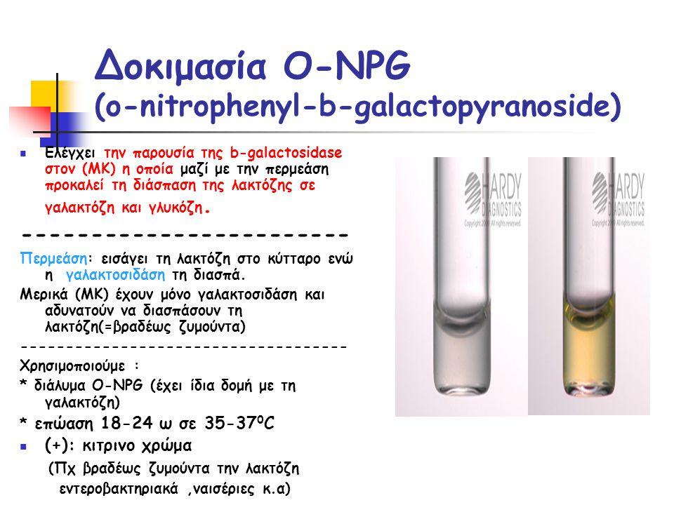 Δοκιμασία O-NPG (o-nitrophenyl-b-galactopyranoside)  Ελέγχει την παρουσία της b-galactosidase στον (ΜΚ) η οποία μαζί με την περμεάση προκαλεί τη διάσπαση της λακτόζης σε γαλακτόζη και γλυκόζη.