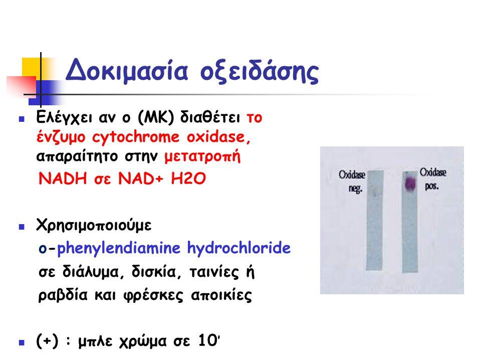 Δοκιμασία οξειδάσης  Ελέγχει αν ο (ΜΚ) διαθέτει το ένζυμο cytochrome oxidase, απαραίτητο στην μετατροπή NADH σε NAD+ H2O  Χρησιμοποιούμε ο-phenylendiamine hydrochloride σε διάλυμα, δισκία, ταινίες ή ραβδία και φρέσκες αποικίες  (+) : μπλε χρώμα σε 10 '