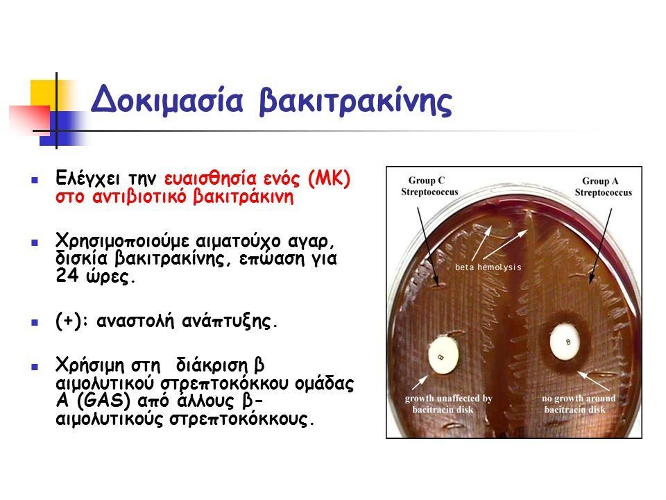 Δοκιμασία βακιτρακίνης  Ελέγχει την ευαισθησία ενός (ΜΚ) στο αντιβιοτικό βακιτράκινη  Χρησιμοποιούμε αιματούχο αγαρ, δισκία βακιτρακίνης, επώαση για 24 ώρες.