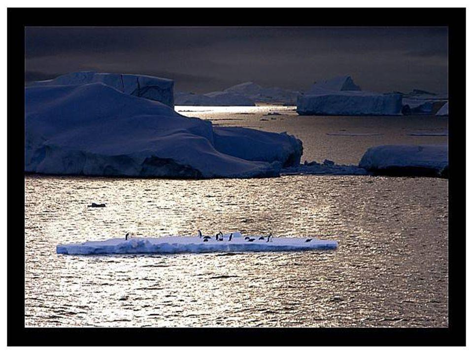 Περίπου το 99% της Ανταρκτικής είναι καλυμμένο με πάγο, φθάνοντας σε κάποια σημεία πολύ βαθιά όπως 4.776 μέτρα.