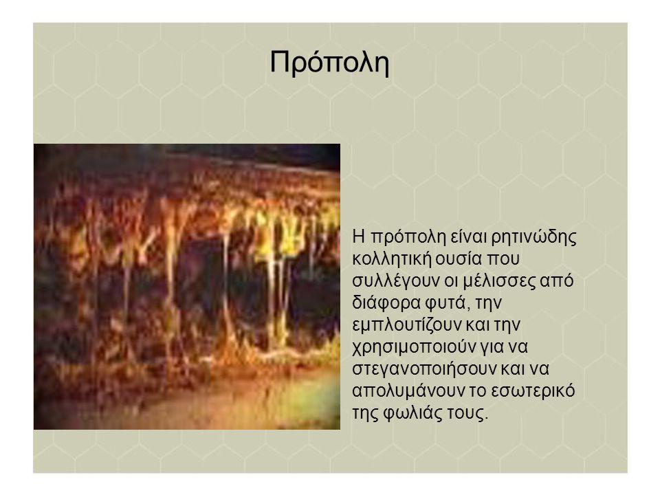 Πρόπολη Η πρόπολη είναι ρητινώδης κολλητική ουσία που συλλέγουν οι μέλισσες από διάφορα φυτά, την εμπλουτίζουν και την χρησιμοποιούν για να στεγανοποι
