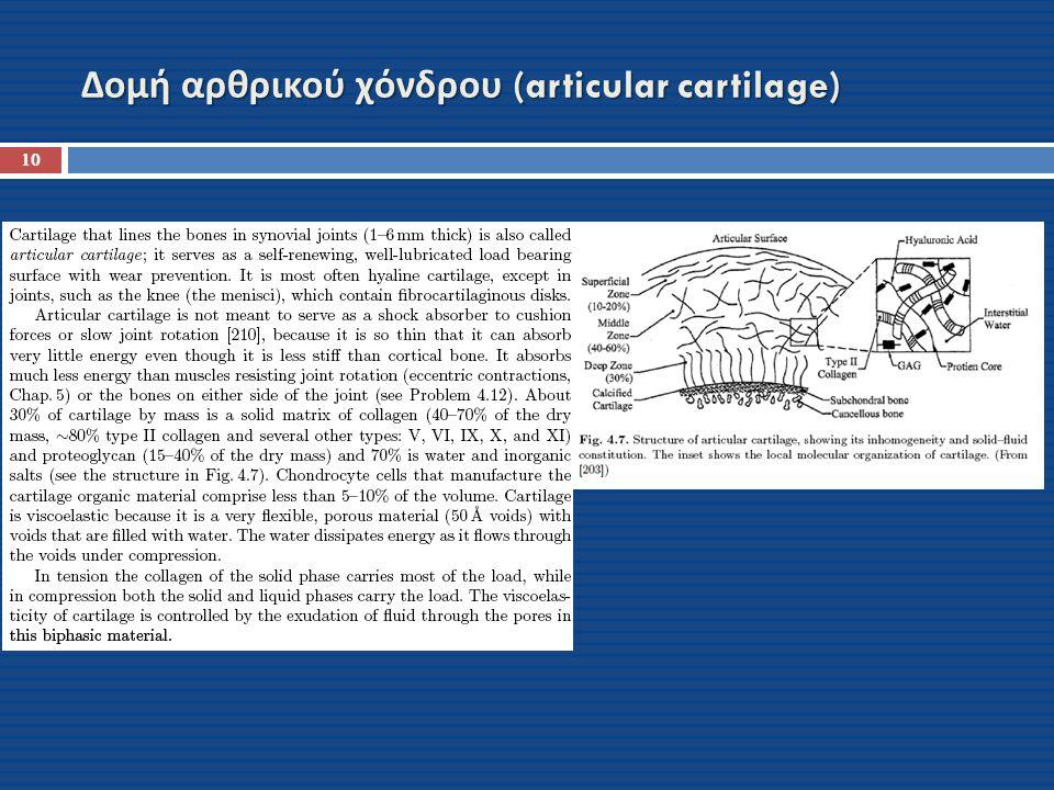 Δομή αρθρικού χόνδρου (articular cartilage) 10