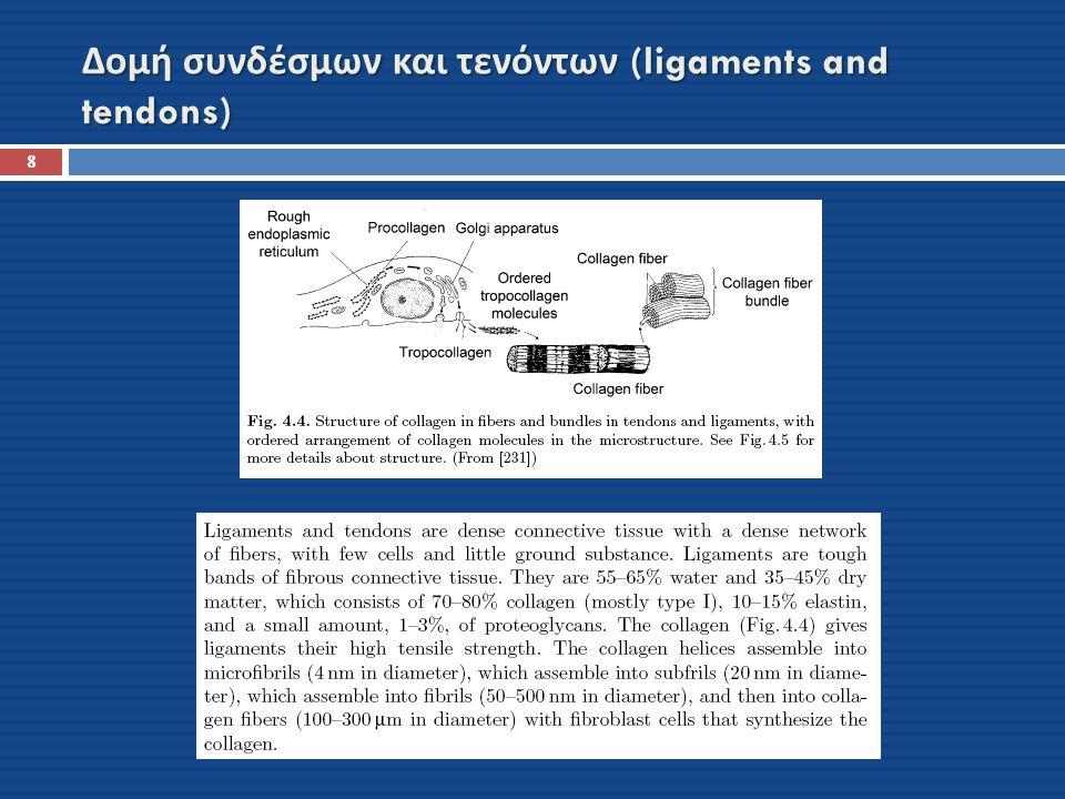 Δομή συνδέσμων και τενόντων (ligaments and tendons) 8