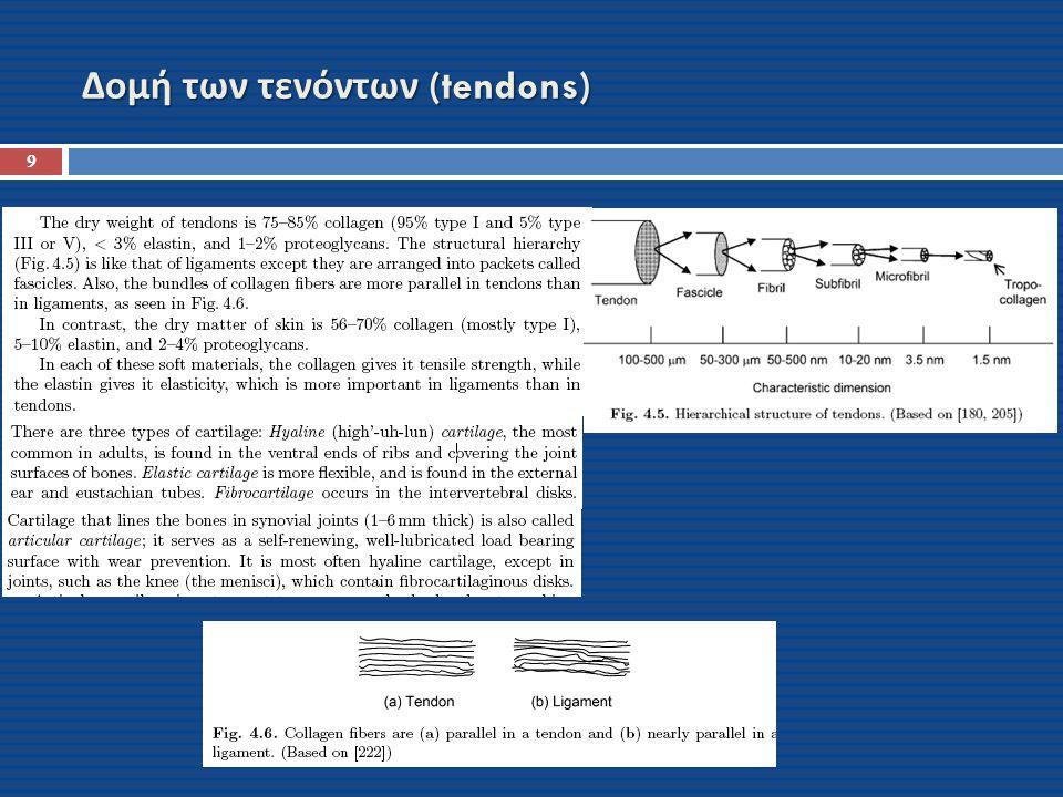 Δομή των τενόντων (tendons) 9
