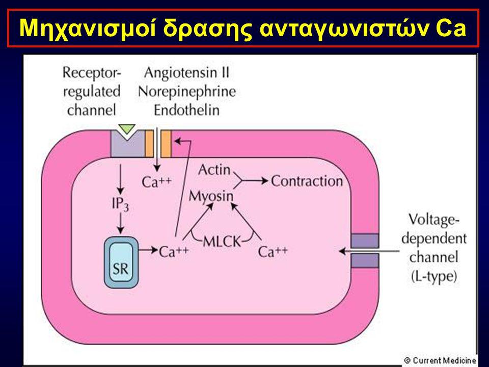 Φαινυλαλκυλαμίνες Βενζοδιαζεπίνες Διυδροπυριδίνες (verapamil (diltiazem) Αγγειοδιαστολή + ++ +++ Αρνητική Ινότροπη δράση ++ + - Αρνητική Χρονότροπη δράση ++ + - Φαρμακολογικές ιδιότητες ανταγωνιστών Ca Αmlodipine,Felodipine Isradipine, Lacidipine Lercanidipine, Manidipine Nimodipine, Nicardipine Varnidipine, Nifedipine