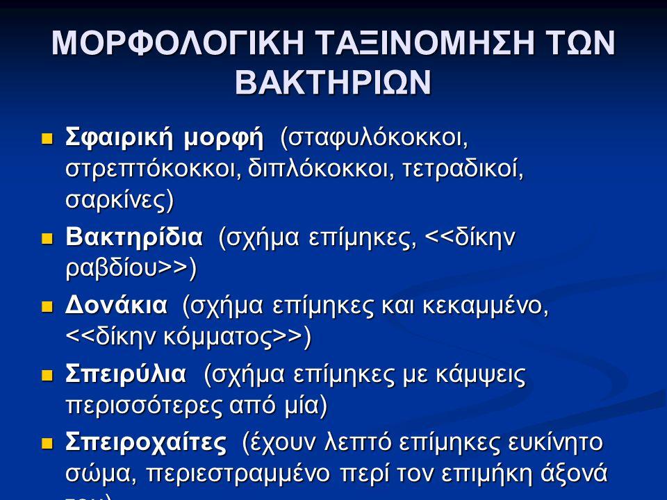 ΚΥΤΤΑΡΙΚΟ ΤΟΙΧΩΜΑ GRAM (+) ΜΙΚΡΟΒΙΩΝ
