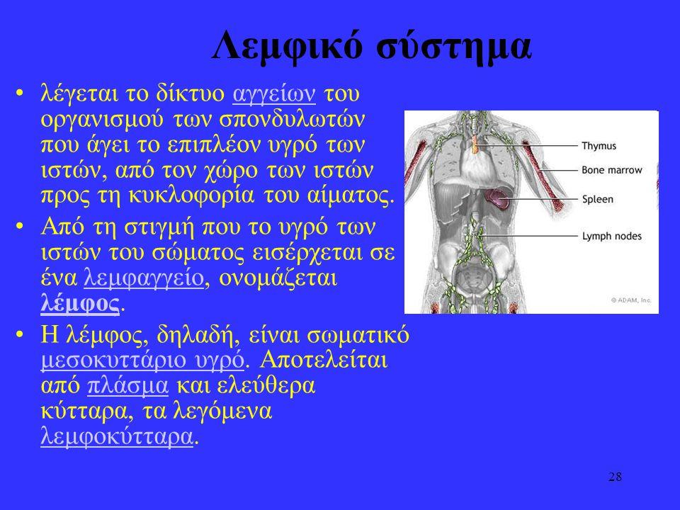 28 Λεμφικό σύστημα •λέγεται το δίκτυο αγγείων του οργανισμού των σπονδυλωτών που άγει το επιπλέον υγρό των ιστών, από τον χώρο των ιστών προς τη κυκλο