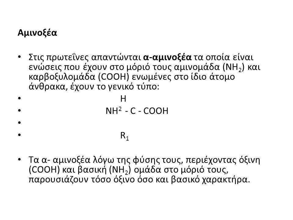 Αμινοξέα • Στις πρωτεΐνες απαντώνται α-αμινοξέα τα οποία είναι ενώσεις που έχουν στο μόριό τους αμινομάδα (ΝΗ 2 ) και καρβοξυλομάδα (COOH) ενωμένες στο ίδιο άτομο άνθρακα, έχουν το γενικό τύπο: • H • NH 2 - C - COOH • • R 1 • Τα α- αμινοξέα λόγω της φύσης τους, περιέχοντας όξινη (COOH) και βασική (ΝΗ 2 ) ομάδα στο μόριό τους, παρουσιάζουν τόσο όξινο όσο και βασικό χαρακτήρα.