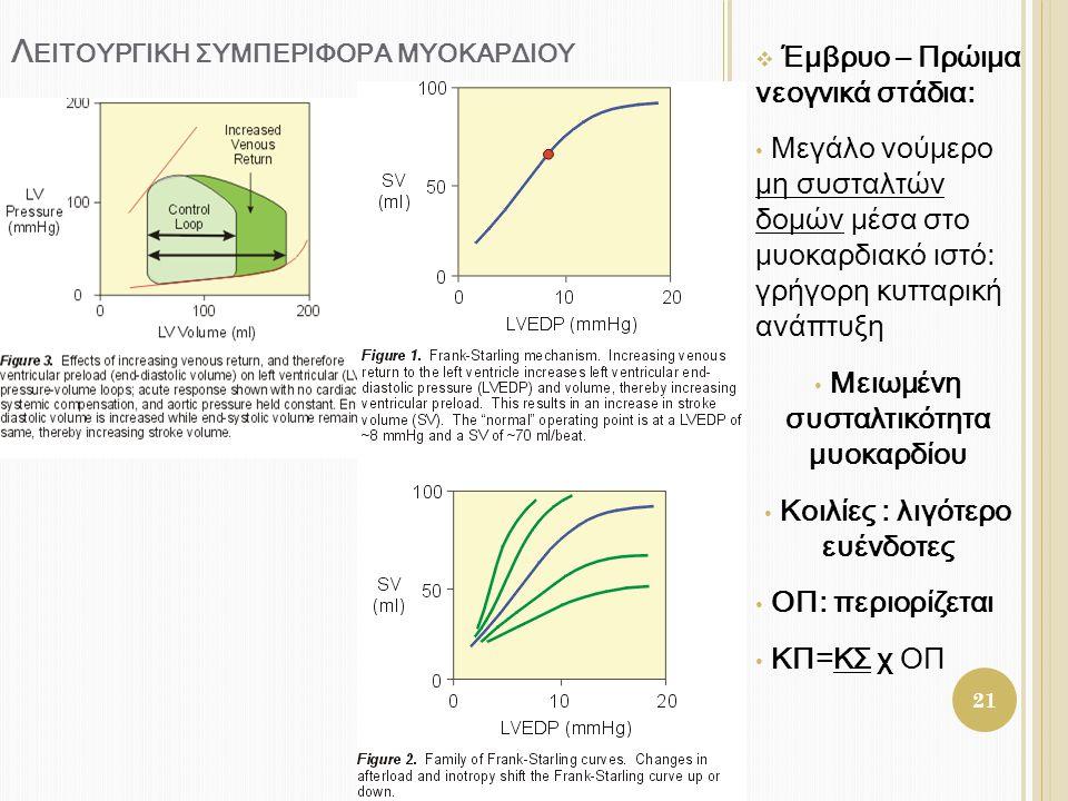 Λ ΕΙΤΟΥΡΓΙΚΗ ΣΥΜΠΕΡΙΦΟΡΑ ΜΥΟΚΑΡΔΙΟΥ  Έμβρυο – Πρώιμα νεογνικά στάδια: • Μεγάλο νούμερο μη συσταλτών δομών μέσα στο μυοκαρδιακό ιστό: γρήγορη κυτταρικ