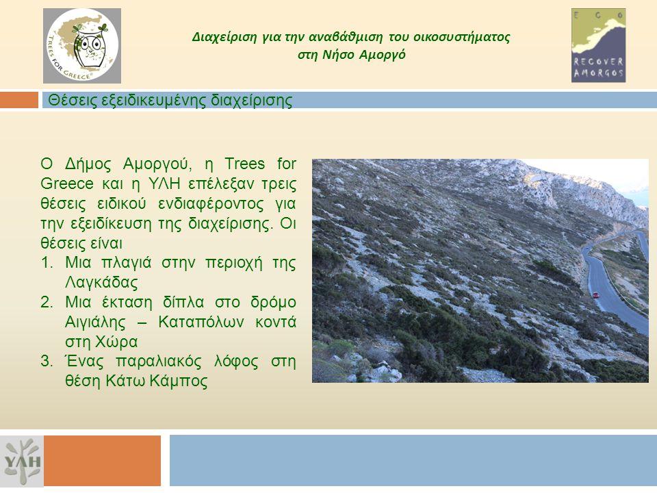 Διαχείριση για την αναβάθμιση του οικοσυστήματος στη Νήσο Αμοργό Ο Δήμος Αμοργού, η Trees for Greece και η ΥΛΗ επέλεξαν τρεις θέσεις ειδικού ενδιαφέρο