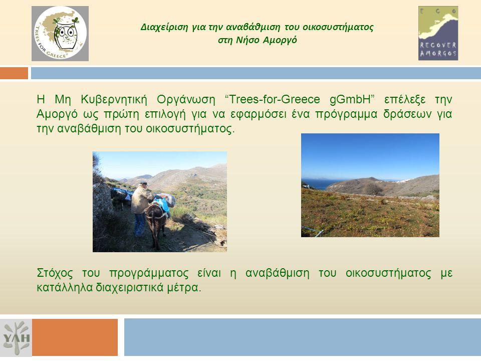 Διαχείριση για την αναβάθμιση του οικοσυστήματος στη Νήσο Αμοργό Ο Δήμος Αμοργού, η Trees for Greece και η ΥΛΗ επέλεξαν τρεις θέσεις ειδικού ενδιαφέροντος για την εξειδίκευση της διαχείρισης.