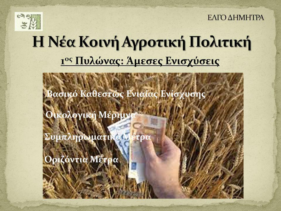 1 ος Πυλώνας: Άμεσες Ενισχύσεις Βασικό Καθεστώς Ενιαίας Ενίσχυσης Οικολογική Μέριμνα Συμπληρωματικά Μέτρα Οριζόντια Μέτρα