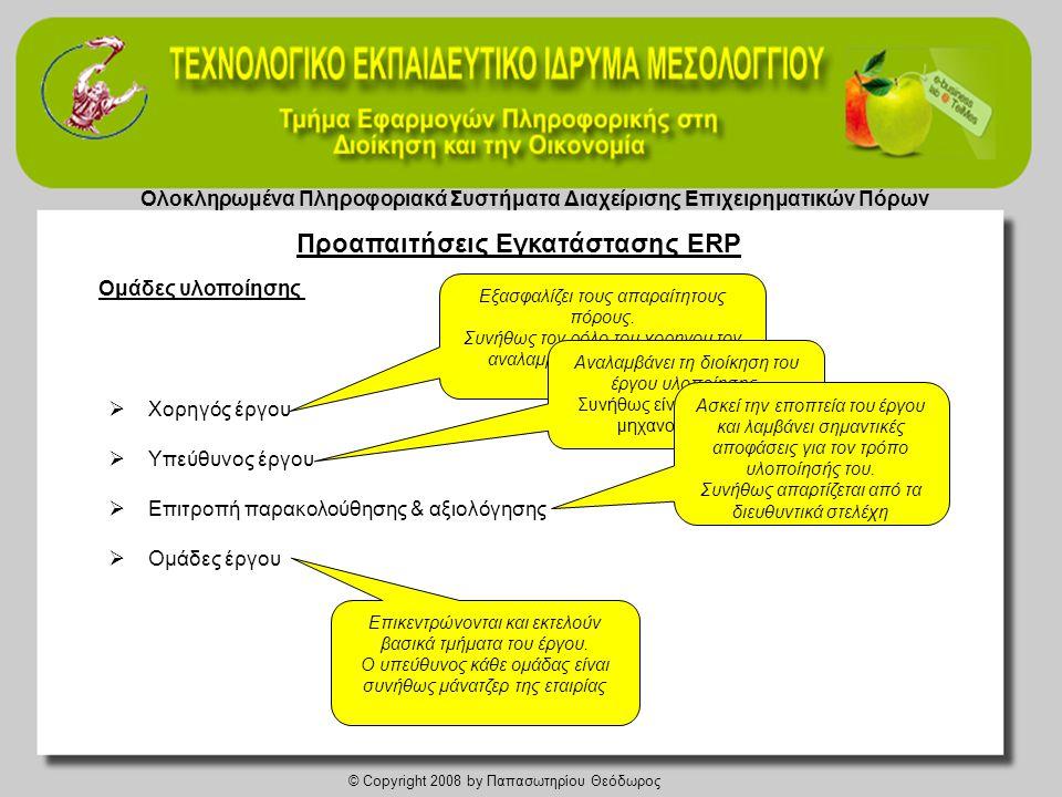 Ολοκληρωμένα Πληροφοριακά Συστήματα Διαχείρισης Επιχειρηματικών Πόρων © Copyright 2008 by Παπασωτηρίου Θεόδωρος Ομάδες υλοποίησης  Χορηγός έργου  Υπεύθυνος έργου  Επιτροπή παρακολούθησης & αξιολόγησης  Ομάδες έργου Εξασφαλίζει τους απαραίτητους πόρους.