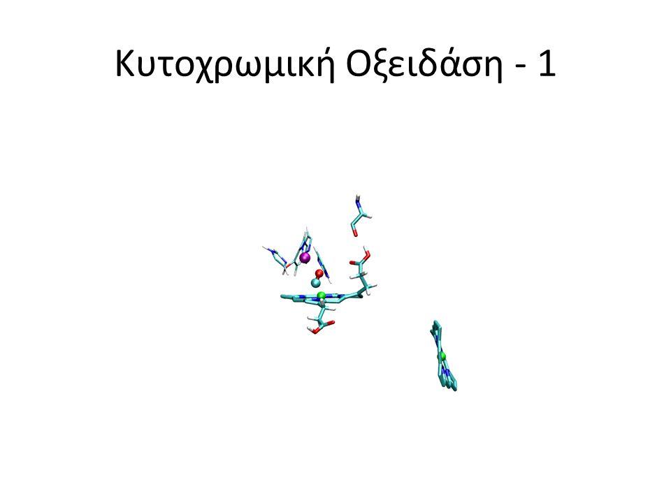 Κυτοχρωμική Οξειδάση - 2