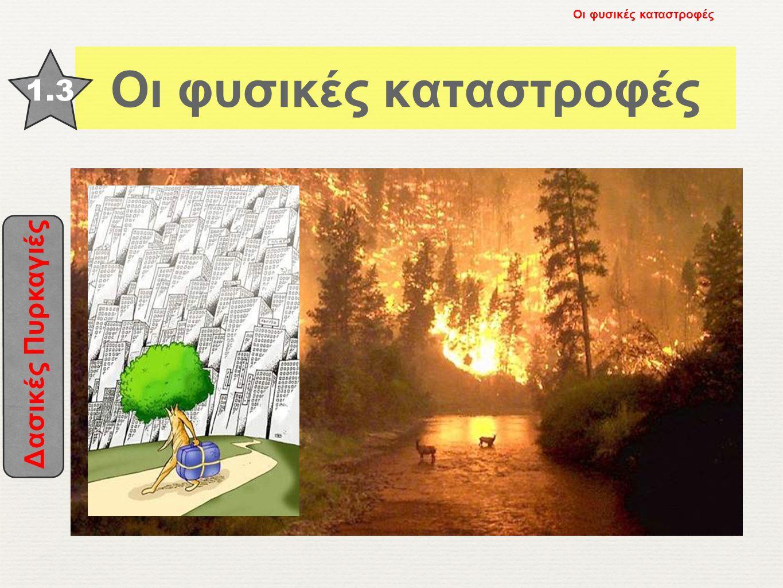 Δασικές Πυρκαγιές 1.3 Οι φυσικές καταστροφές