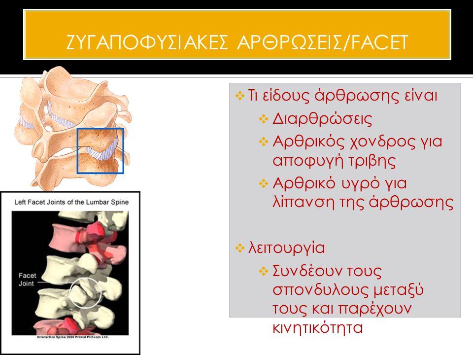 ΖΥΓΑΠΟΦΥΣΙΑΚΕΣ ΑΡΘΡΩΣΕΙΣ/FACET  Τι είδους άρθρωσης είναι  Διαρθρώσεις  Αρθρικός χονδρος για αποφυγή τριβης  Αρθρικό υγρό για λίπανση της άρθρωσης