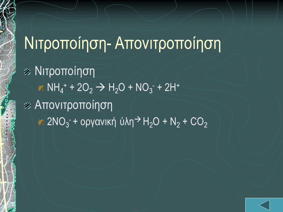 Νιτροποίηση- Απονιτροποίηση Νιτροποίηση ΝΗ 4 + + 2Ο 2  Η 2 Ο + ΝΟ 3 - + 2Η + Απονιτροποίηση 2ΝΟ 3 - + οργανική ύλη  Η 2 Ο + Ν 2 + CO 2