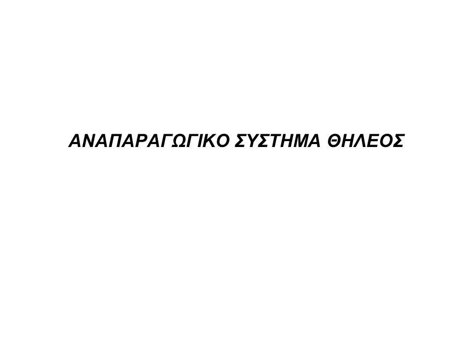 •Αναπαραγωγικό σύστημα θήλεος • •Α) ωοθήκες •Β) επικουρικά όργανα • μήτρα • ωαγωγοί • κόλπος • εξωτερικά όργανα •