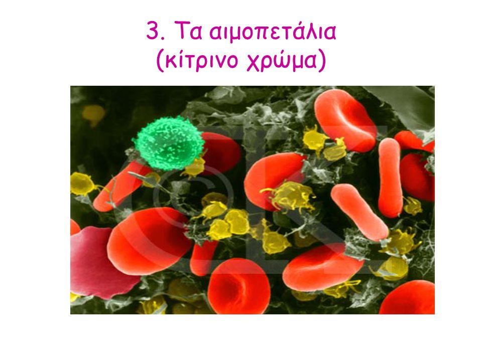 3. Τα αιμοπετάλια (κίτρινο χρώμα)