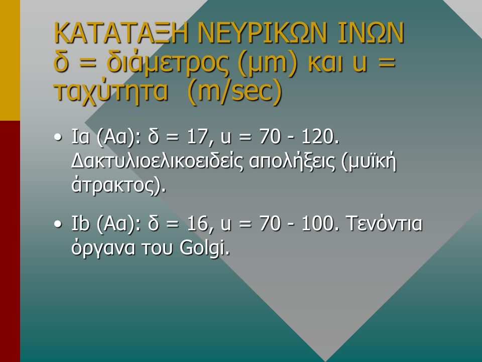 ΚΑΤΑΤΑΞΗ ΝΕΥΡΙΚΩΝ ΙΝΩΝ δ = διάμετρος (μm) και u = ταχύτητα (m/sec) •Ια (Αα): δ = 17, u = 70 - 120. Δακτυλιοελικοειδείς απολήξεις (μυϊκή άτρακτος). •Ιb