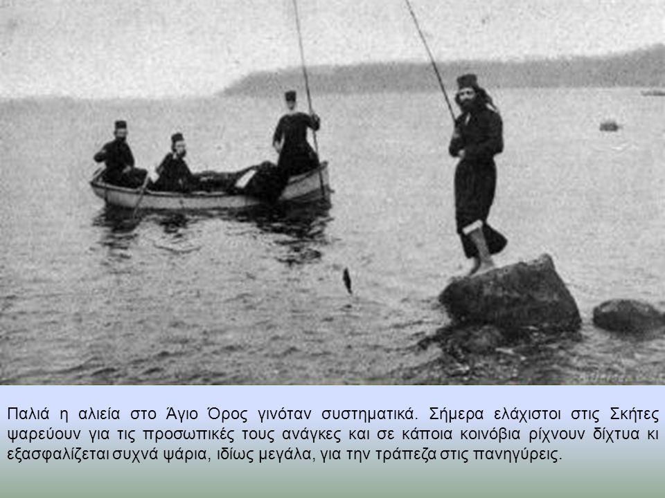 Παλιά η αλιεία στο Άγιο Όρος γινόταν συστηματικά. Σήμερα ελάχιστοι στις Σκήτες ψαρεύουν για τις προσωπικές τους ανάγκες και σε κάποια κοινόβια ρίχνουν