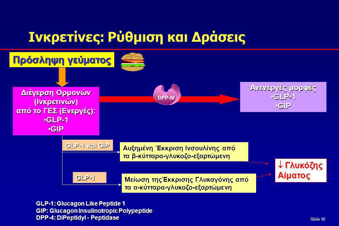 Slide 10 Inactive GLP-1 and GIP Πρόσληψη γεύματος GLP-1 GIP GLP-1 Διέγερση Ορμονών (Ινκρετινών) από το ΓΕΣ (Eνεργές): •GLP-1 •GIP GLP-1: Glucagon Like Peptide 1 GIP: Glucagon Insulinotropic Polypeptide DPP-4: DiPeptidyl - Peptidase Ανενεργές μορφές •GLP-1 •GIP Iνκρετίνες: Ρύθμιση και Δράσεις GLP-1 και GIP GLP-1 Aυξημένη Έκκριση Ινσουλίνης από τα β-κύτταρα-γλυκοζο-εξαρτώμενη Μείωση τηςΈκκρισης Γλυκαγόνης από τα α-κύτταρα-γλυκοζο-εξαρτώμενη Γλυκόζης  ΓλυκόζηςΑίματος DPP-IV