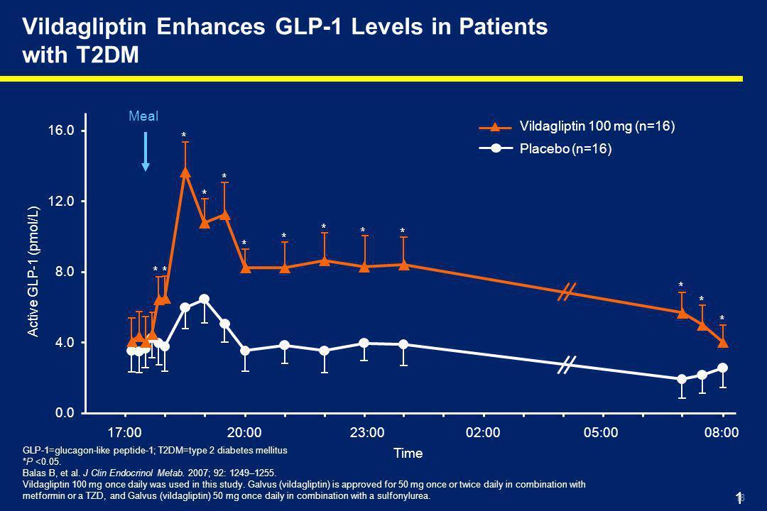 18 18 Meal * * * * * * * * * * * * Vildagliptin 100 mg (n=16) Placebo (n=16) Vildagliptin Enhances GLP-1 Levels in Patients with T2DM GLP-1=glucagon-like peptide-1; T2DM=type 2 diabetes mellitus *P <0.05.
