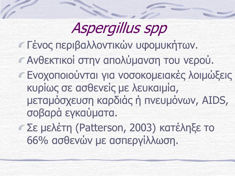 Αspergillus spp Γένος περιβαλλοντικών υφομυκήτων. Ανθεκτικοί στην απολύμανση του νερού. Ενοχοποιούνται για νοσοκομειακές λοιμώξεις κυρίως σε ασθενείς