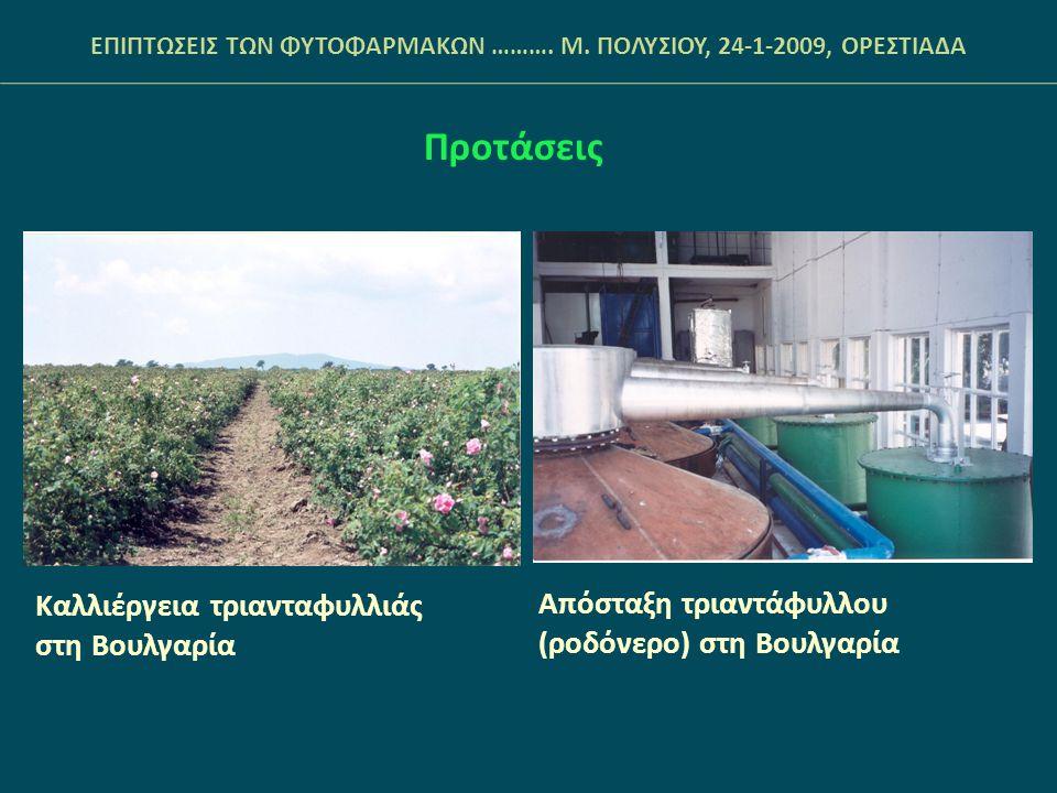 ΕΠΙΠΤΩΣΕΙΣ ΤΩΝ ΦΥΤΟΦΑΡΜΑΚΩΝ ………. Μ. ΠΟΛΥΣΙΟΥ, 24-1-2009, ΟΡΕΣΤΙΑΔΑ Προτάσεις Καλλιέργεια τριανταφυλλιάς στη Βουλγαρία Απόσταξη τριαντάφυλλου (ροδόνερο