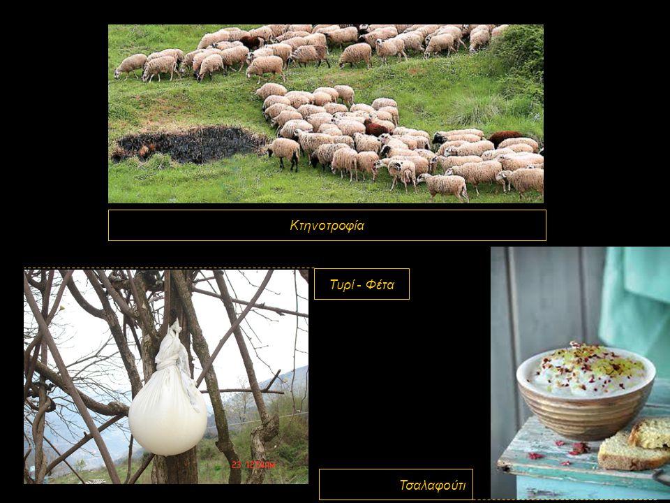 Κτηνοτροφία Τσαλαφούτι Τυρί - Φέτα