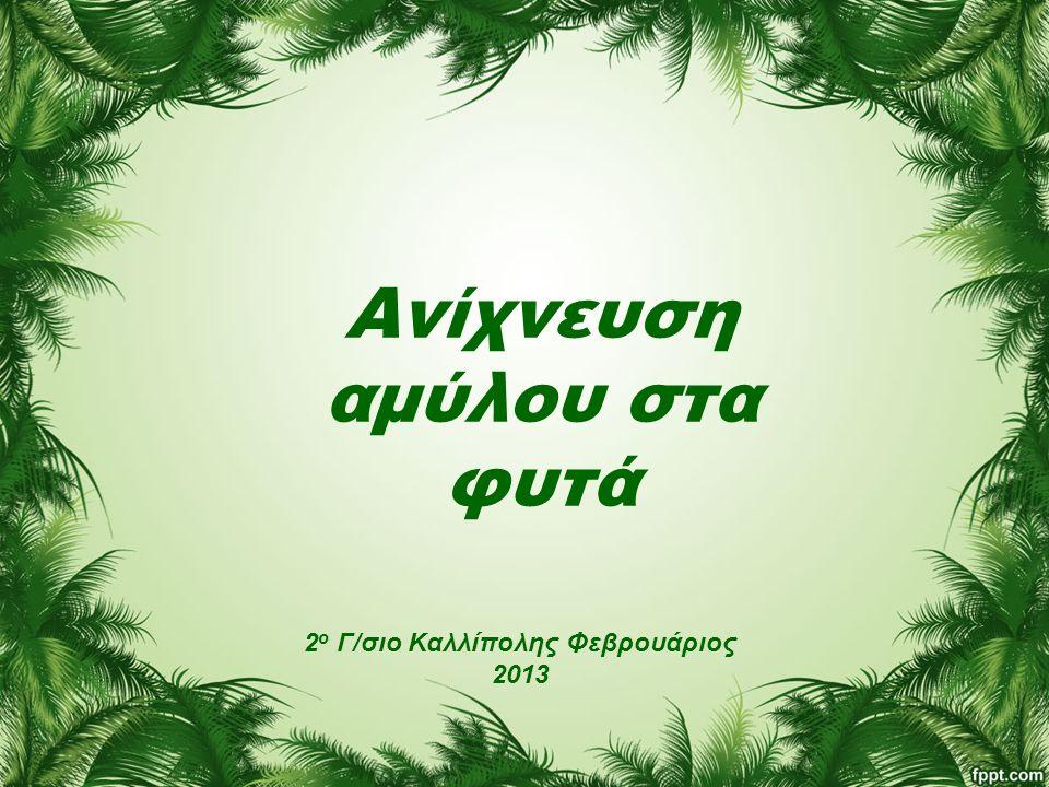 Ανίχνευση αμύλου στα φυτά 2 ο Γ/σιο Καλλίπολης Φεβρουάριος 2013