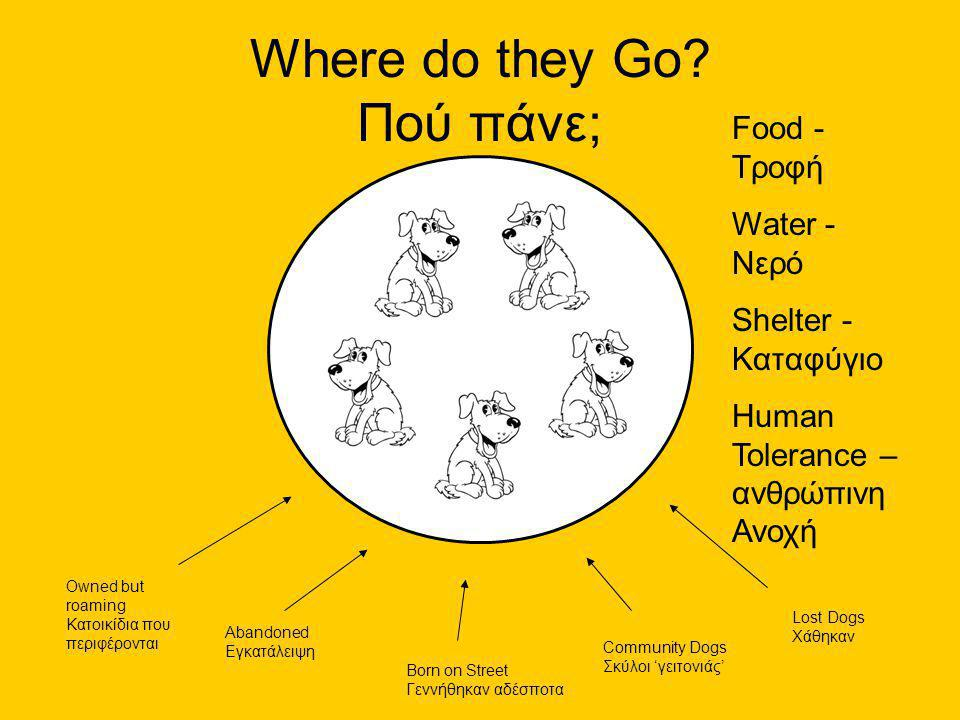 Food - Τροφή Water - Νερό Shelter - Καταφύγιο Human Tolerance – ανθρώπινη Ανοχή Where do they Go.
