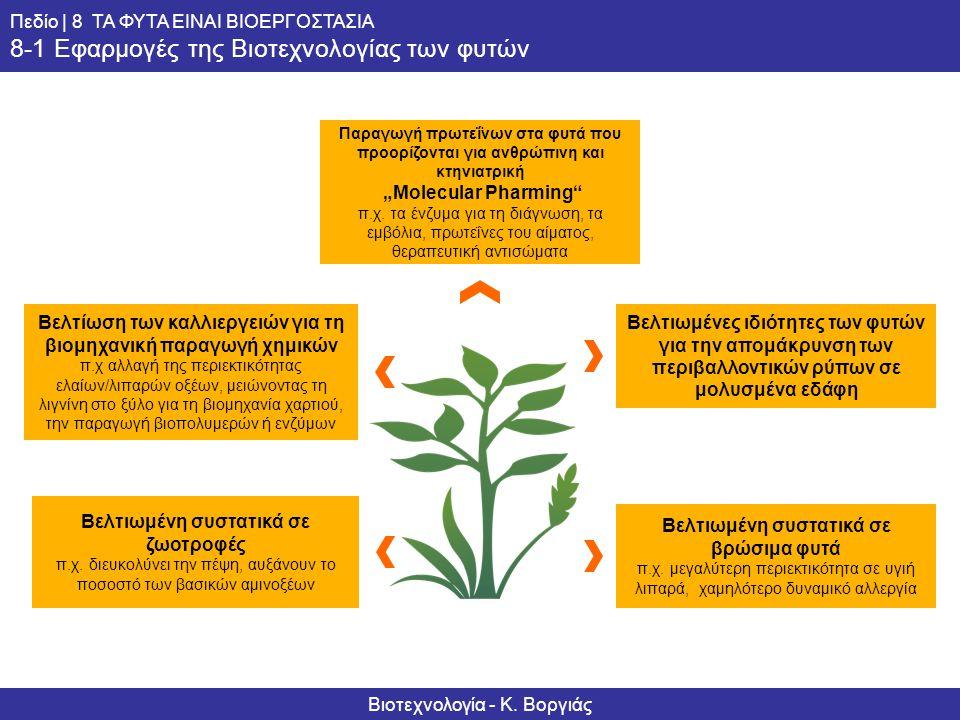 Informationsserie – Biotechnologie Ausblick | 8 DIE PFLANZE ALS BIOFABRIK 8-1 Anwendungen der Pflanzenbiotechnologie Βελτιωμένη συστατικά σε βρώσιμα φ
