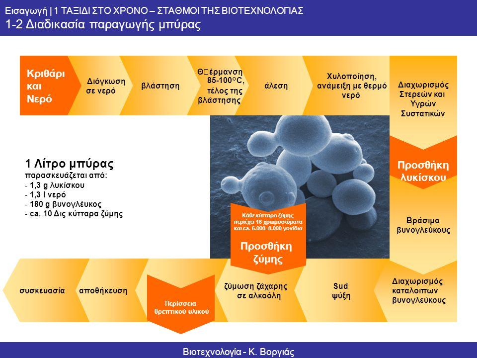 Informationsserie – Biotechnologie 1 Λίτρο μπύρας παρασκευάζεται από: -1,3 g λυκίσκου -1,3 l νερό -180 g βυνογλέυκος -ca. 10 Δις κύτταρα ζύμης Κριθάρι