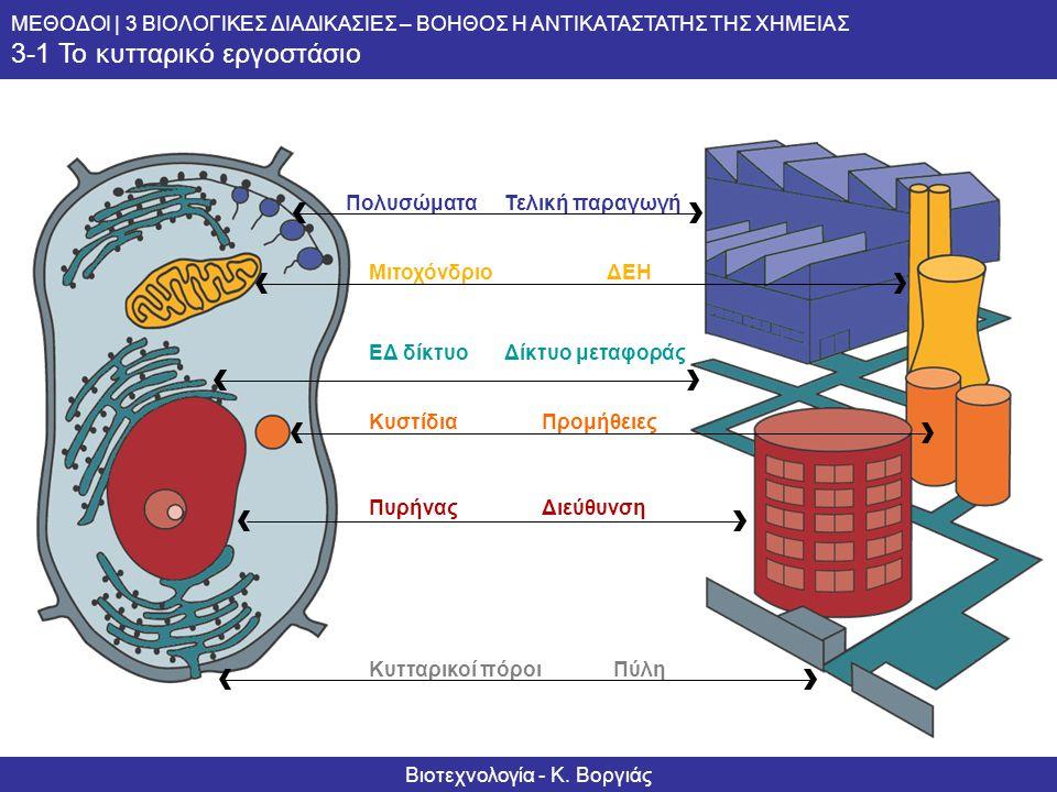 Informationsserie – Biotechnologie Methoden | 3 BIOLOGISCHE VERFAHREN – HELFER DER CHEMIE 3-1 Biofabrik Zelle Πολυσώματα Mιτοχόνδριο ΕΔ δίκτυο Κυστίδι