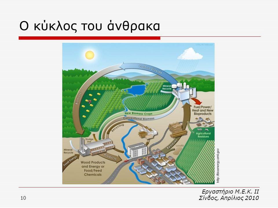 10 Ο κύκλος του άνθρακα Εργαστήριο Μ.Ε.Κ. ΙΙ Σίνδος, Απρίλιος 2010 http://bioenergy.ornl.gov